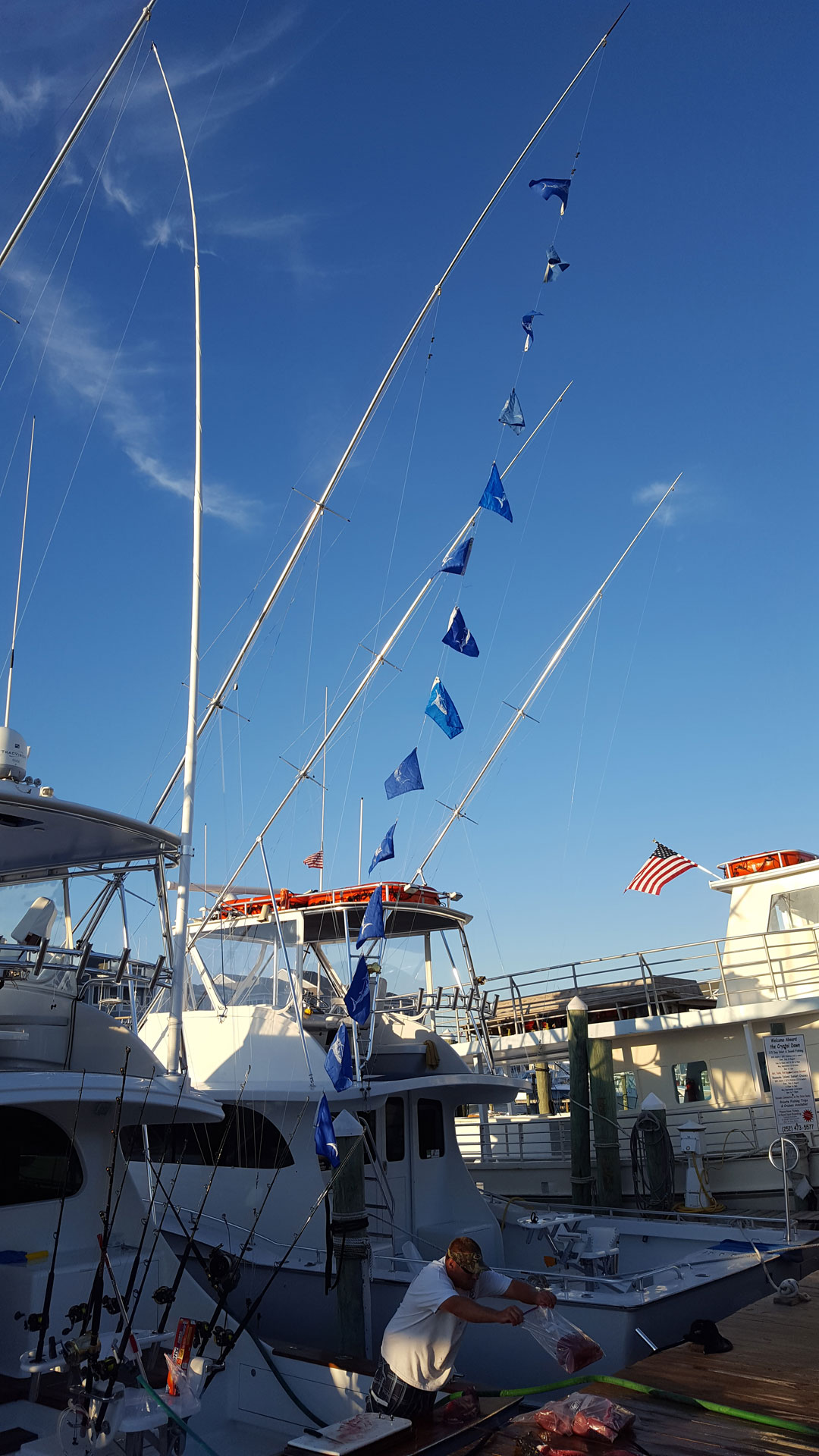 Awesome White Marlin fishing for us today. 14 White Marlin and a 69 lb. Tuna. Give us a call